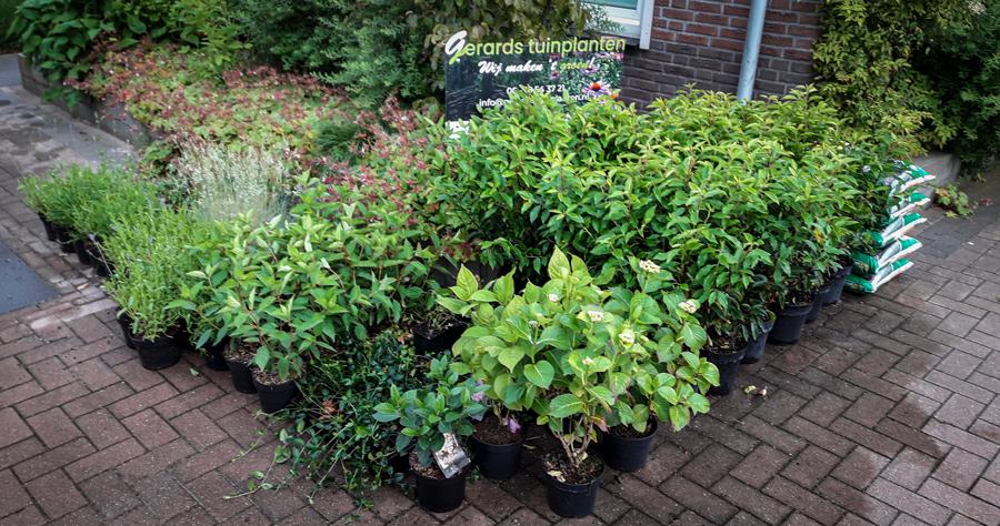 een-eerlijke-en-groen-prijs-gerards-tuinplanten