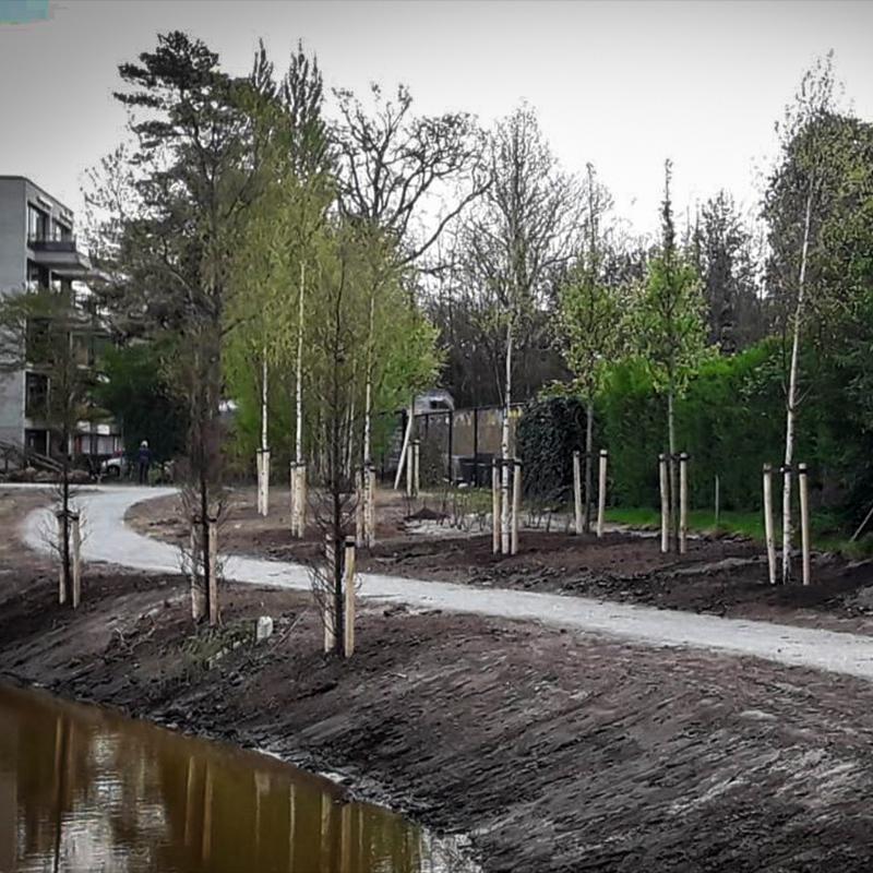 planten-aanplanten-gerards-tuinplanten